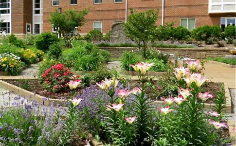 Allegheny Arboretum