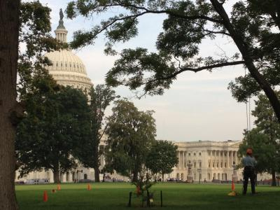 United States Capitol Grounds