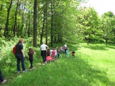 Pleasant Hills Arboretum kids hike