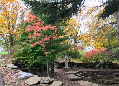 Jefferson Memorial Fall trees
