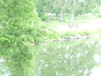 Dayton VA Medical Center Gardens & Grotto