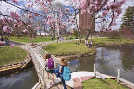Frank A. Waugh Arboretum - spring
