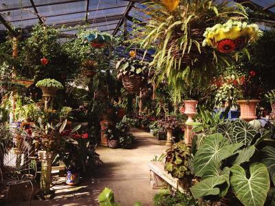 Vallarta Botanic Garden