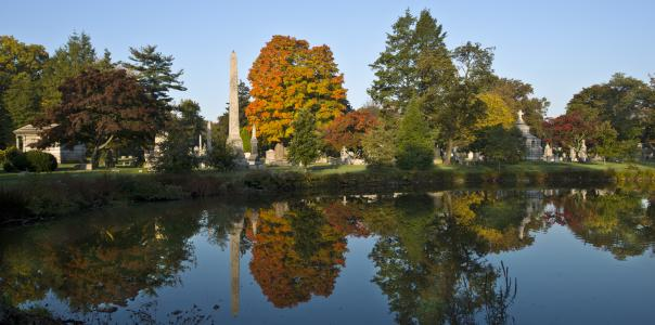 Woodlawn Cemetery Fall