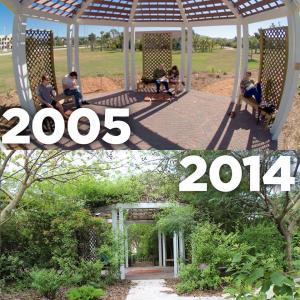 A before and after shot of the Robert J. Husckshorn Arboretum