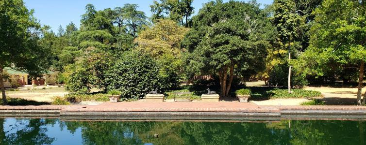 Aiken City Arboretum looking back from pools