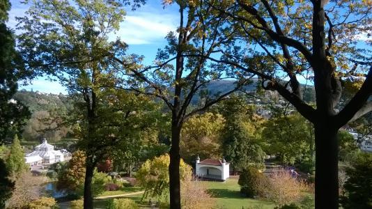 Lower garden view from arboretum