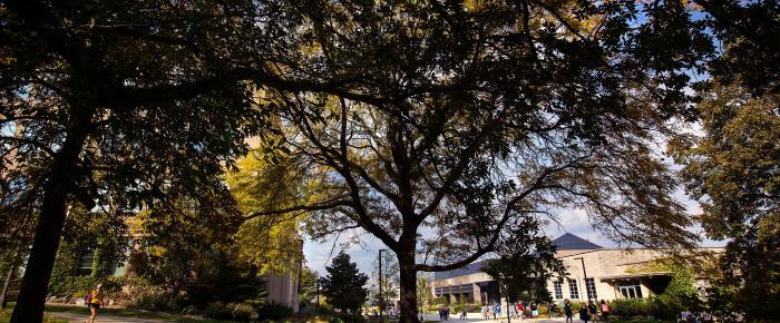 Arboretum campus fall