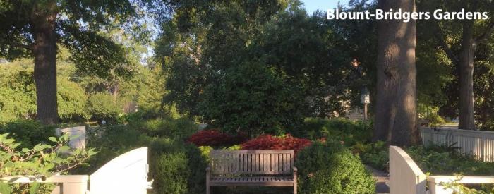 Blount Bridgers Arboretum