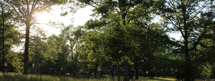 Kilmer Park and Arboretum