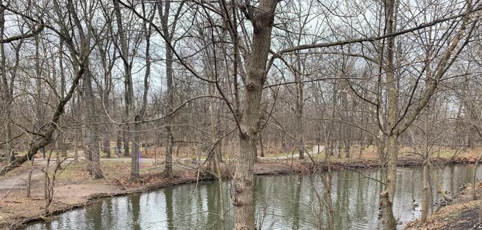 Creekside Arboretum