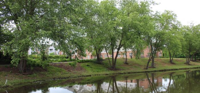 Collington Arboretum
