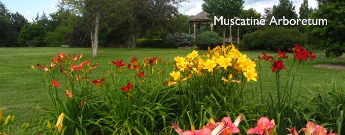 Muscatine Arboretum
