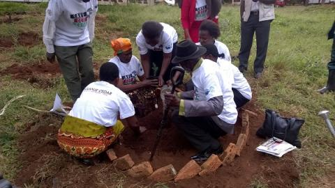 Traditional leaders planting a Mulanje Cedar seedling at the project launch