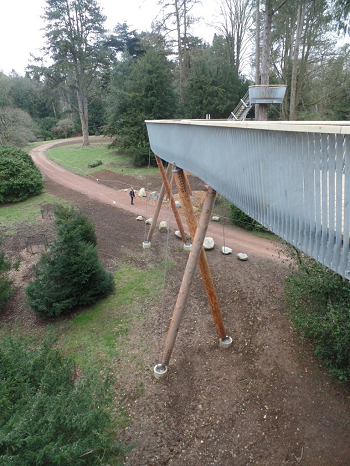 STIHL-Treetop-Walkway-Willesley-Drive-and-crows-nest-feature