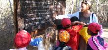 BGCI education