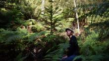 Dr Hiedi Zimmer in a secret grove of translocated Wollemi Pines. Photo: Nick Moir