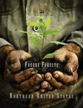 Future Forests of the Northern United States, hands holding tree seedling