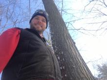 Dan Brinkman intends to use this rare healthy mature American chestnut tree to help bring the species back from the brink. (Andrew Lupton/CBC)